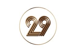 Ulus 29