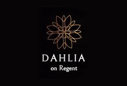 Dahlia on Regent